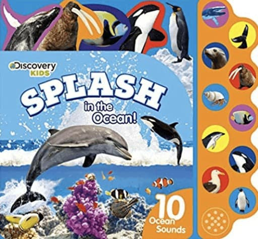 splash a book about whales for kids