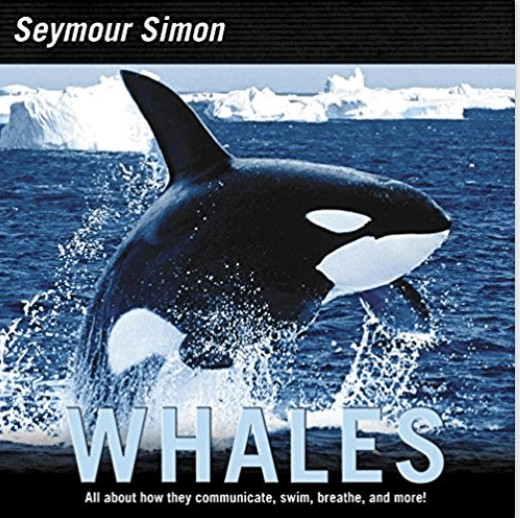 whales a book for lids by seymour simon