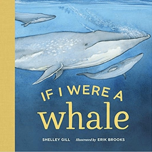 if i were a whale book for kids