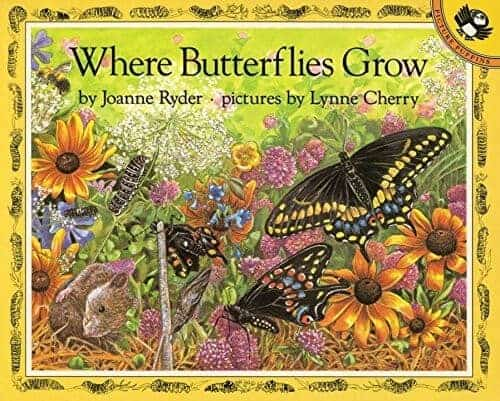 where butterflies grow a kids book about butterflies