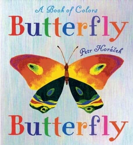 a book of colors butterfly book for kids
