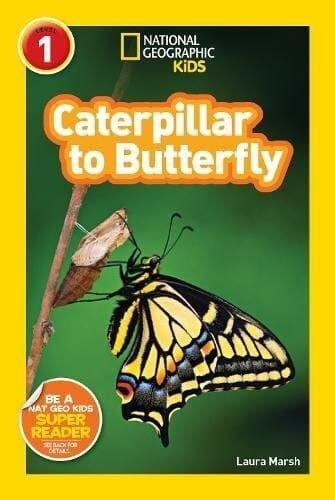 caterpillar-butterfly book for kids