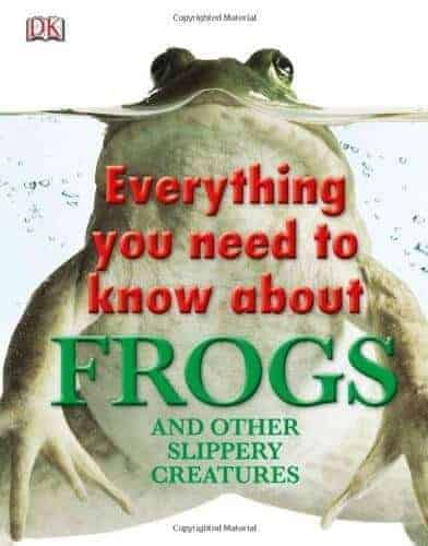 everything about frogs and a book for kids
