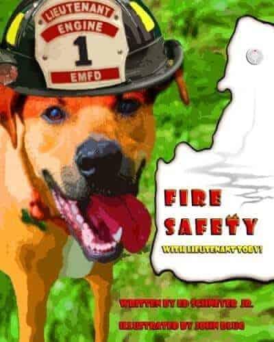 fire safety lieutenant