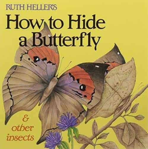 how to hide a butterfly a book for kids about butterflies