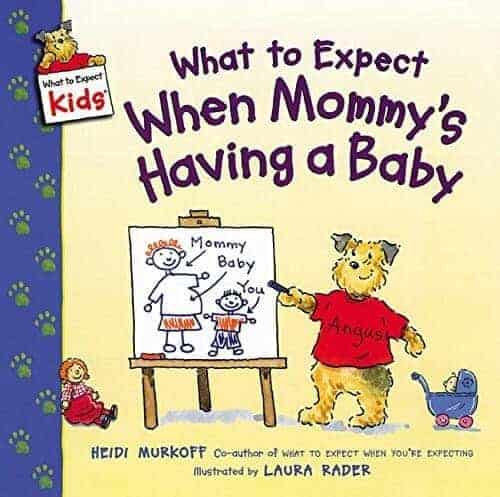 what to expect when mommy's having a new baby a book for kids