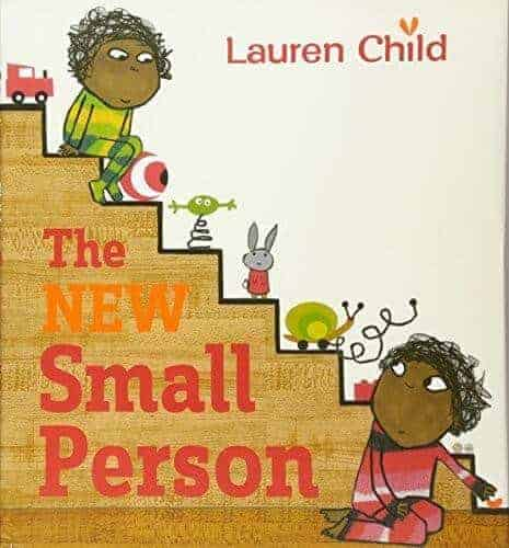 the small new person a book about being a big brother or big sister