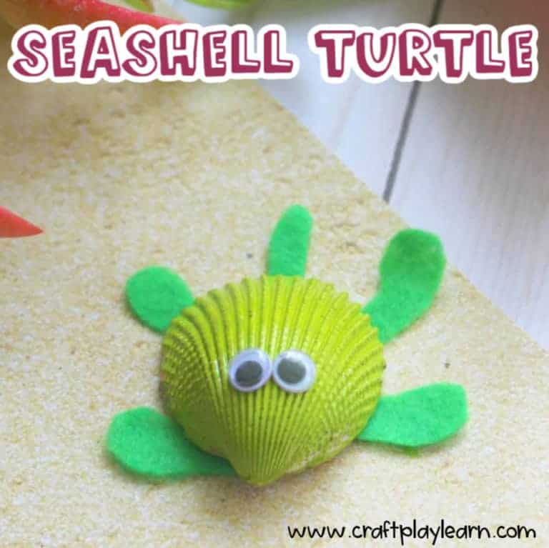 turtle craft for kids made from a seashell