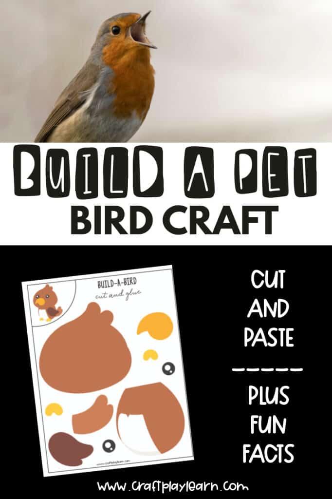 BUILD A PET BIRD CRAFT